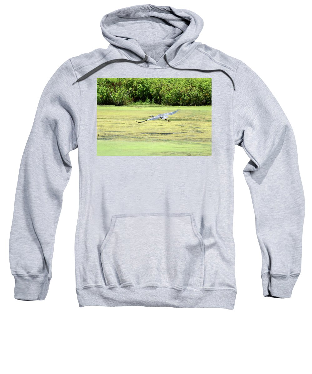 Marine Life Sweatshirt featuring the photograph Wingspan by Terrie Stickle