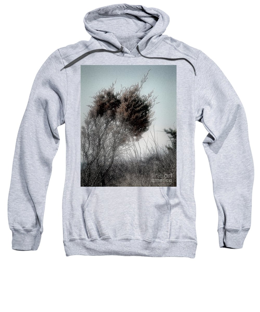 Beach Sweatshirt featuring the painting Winter Cedar by RC DeWinter