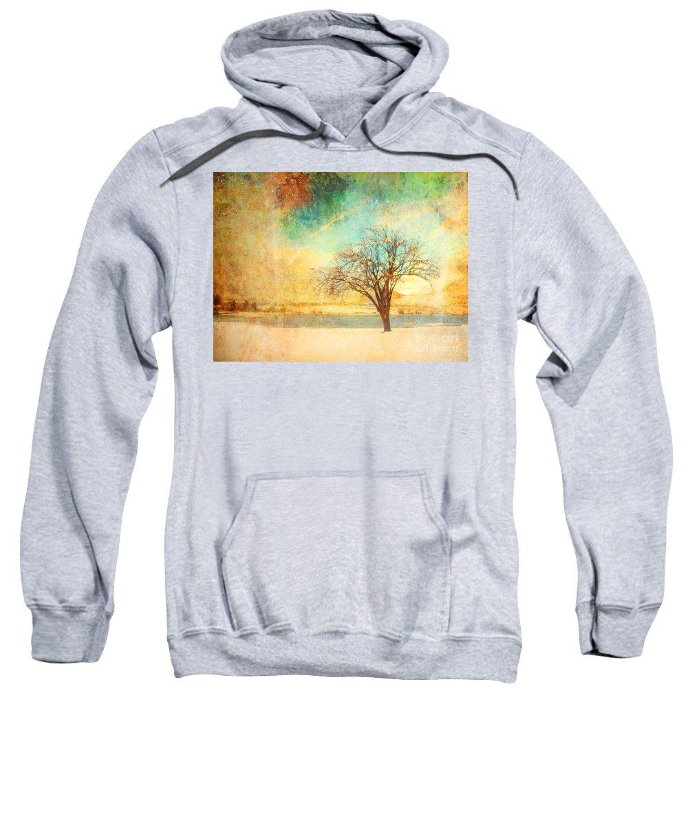 Tree Sweatshirt featuring the photograph Winter Dreams by Tara Turner