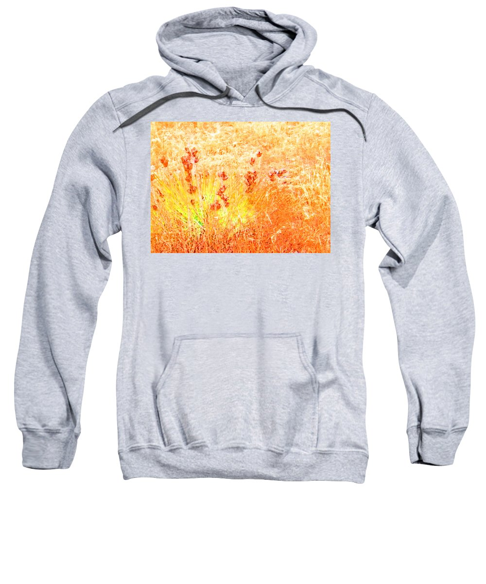 Abstract Sweatshirt featuring the photograph Winter Grasses by Lenore Senior