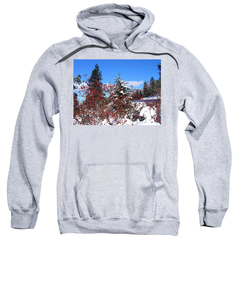 Landscape Sweatshirt featuring the photograph Winter Haven by Will Borden