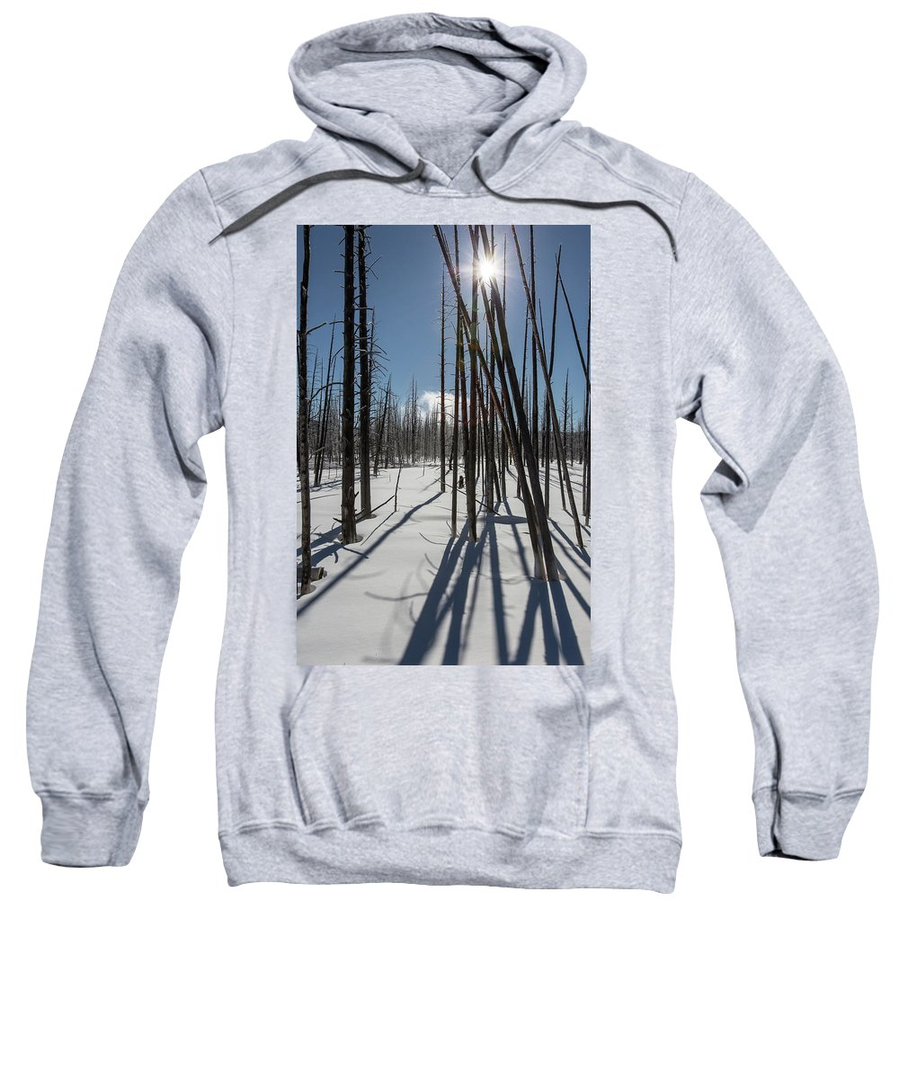 Winter Sweatshirt featuring the photograph Winter Light by Jack Bell