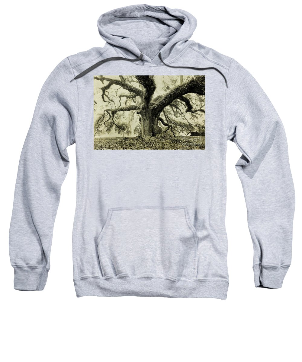 Oak Tree Sweatshirt featuring the photograph Winter Oak by Scott Pellegrin