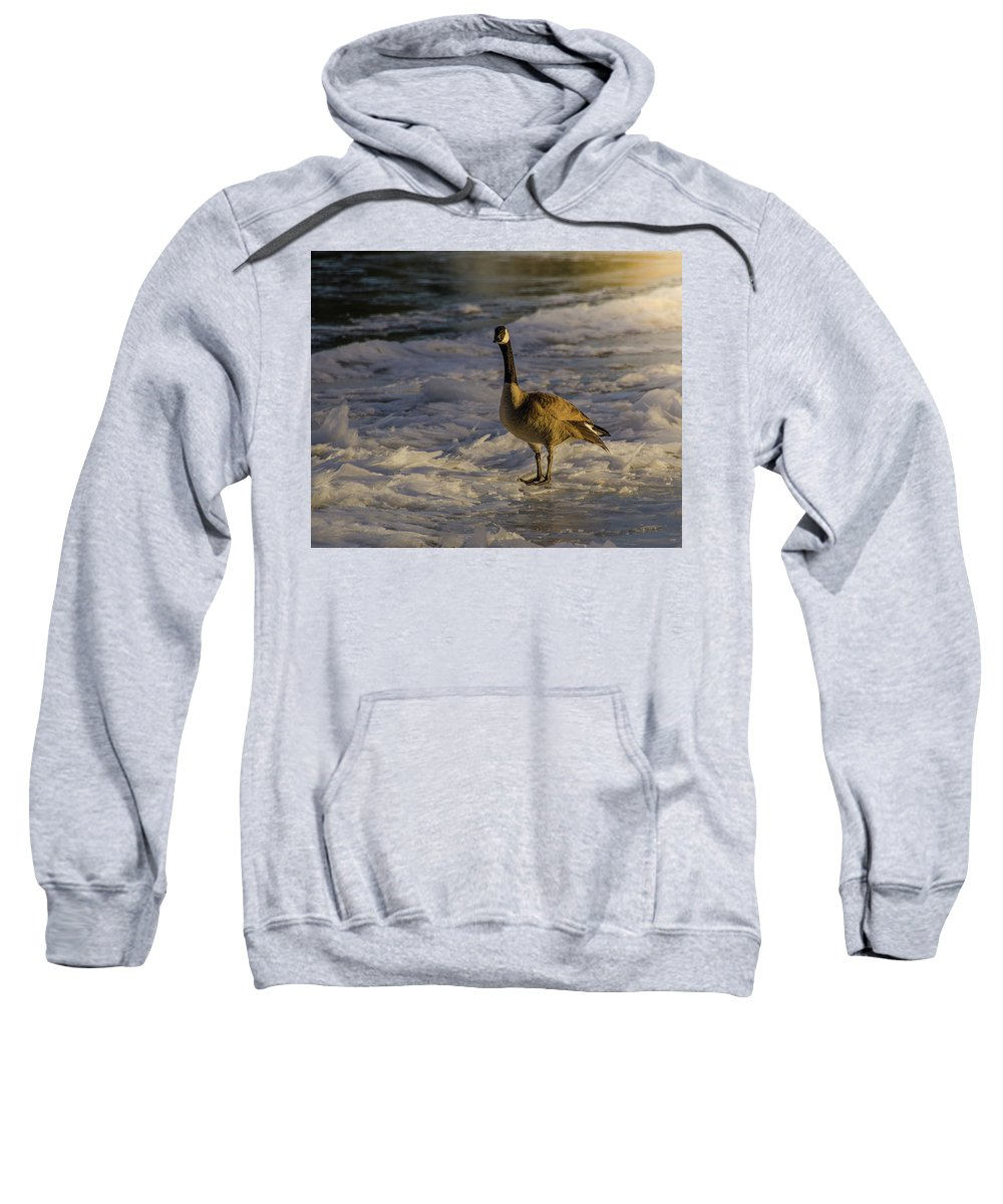 Snake River Sweatshirt featuring the photograph Winter On The River by Yeates Photography