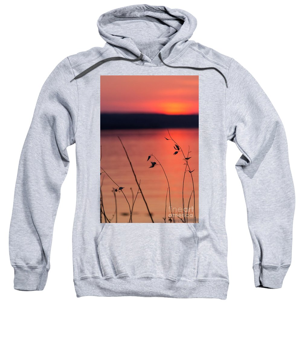 Sweatshirt featuring the photograph Winter Sunset I by Michele Steffey