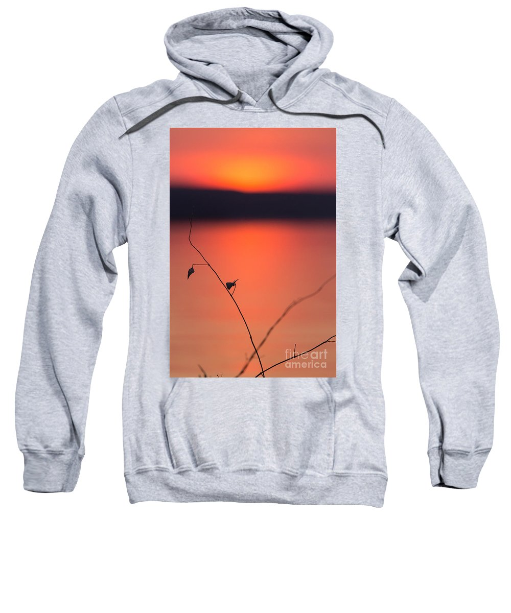 Sweatshirt featuring the photograph Winter Sunset II by Michele Steffey