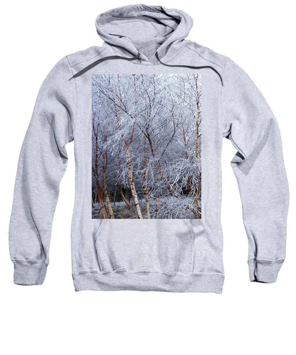 Trees Sweatshirt featuring the photograph Winter Trees by Jacqi Elmslie