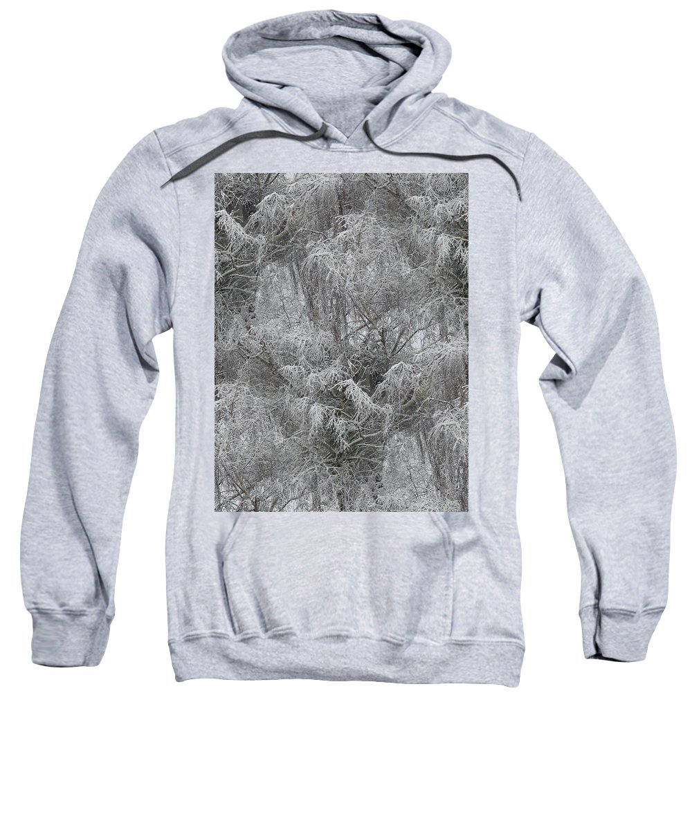 Winter Sweatshirt featuring the photograph Winter Trees by Tim Allen