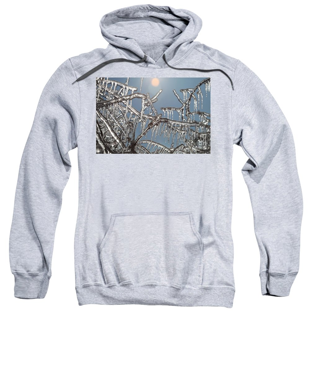 Winter Sweatshirt featuring the photograph Winter Warmth by Nadine Rippelmeyer