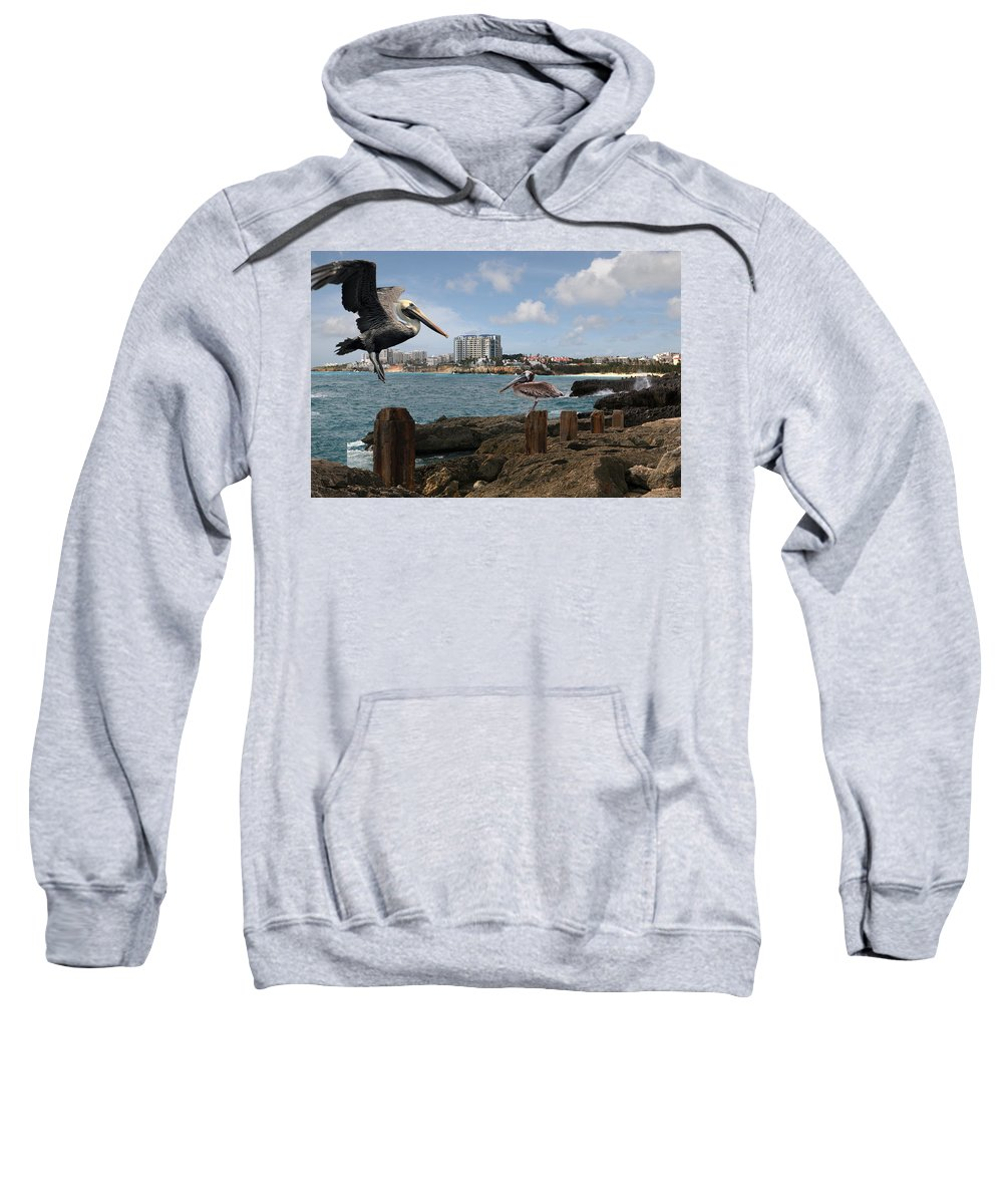 Sweatshirt featuring the painting Wip- Pelican 00 by Cindy D Chinn