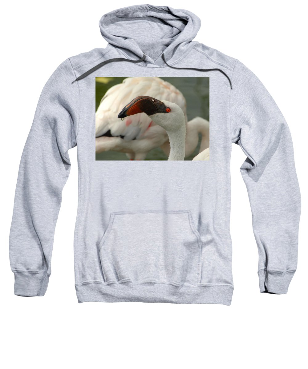 Flamingo Sweatshirt featuring the photograph Wipe Your Chin by Donna Blackhall
