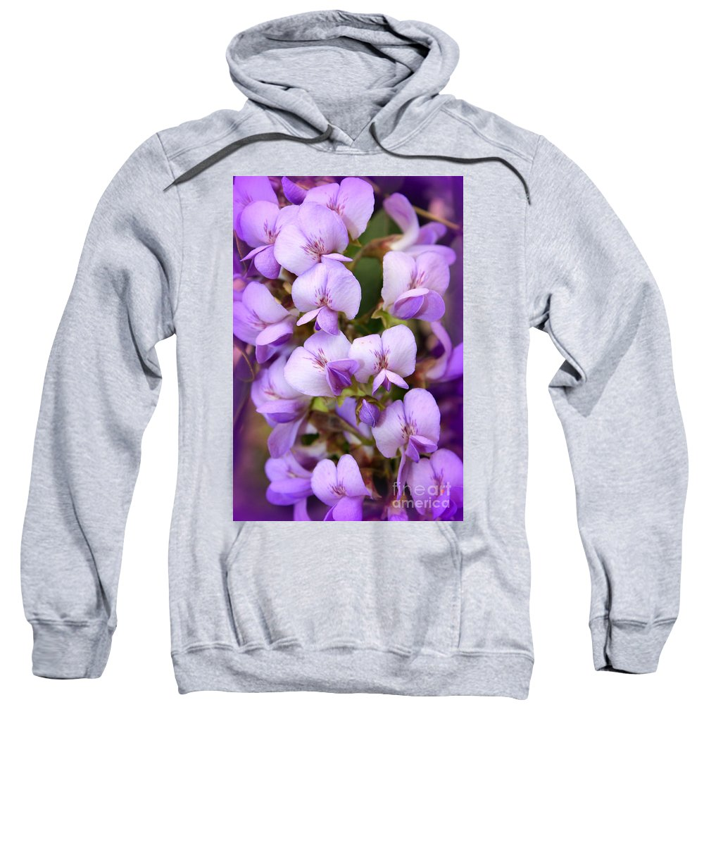 Purple Sweatshirt featuring the photograph Wisteria Blossoms by Carol Groenen