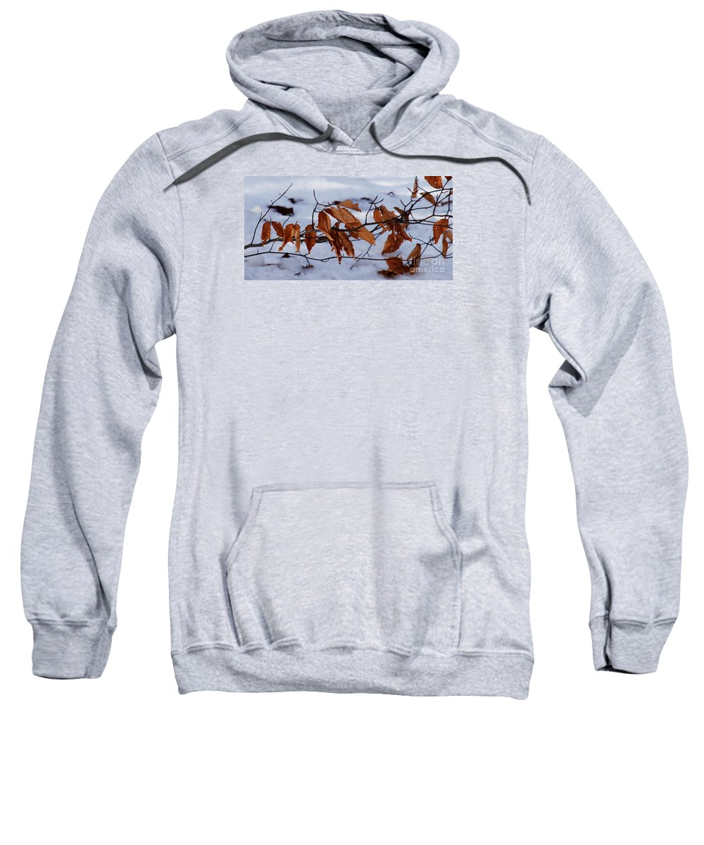 Autumn Sweatshirt featuring the photograph With Autumn's Passing by Linda Shafer
