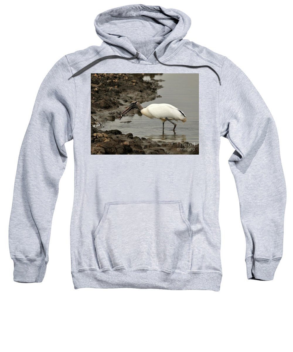 Wood Stork Sweatshirt featuring the photograph Wood Stork With Fish by Al Powell Photography USA