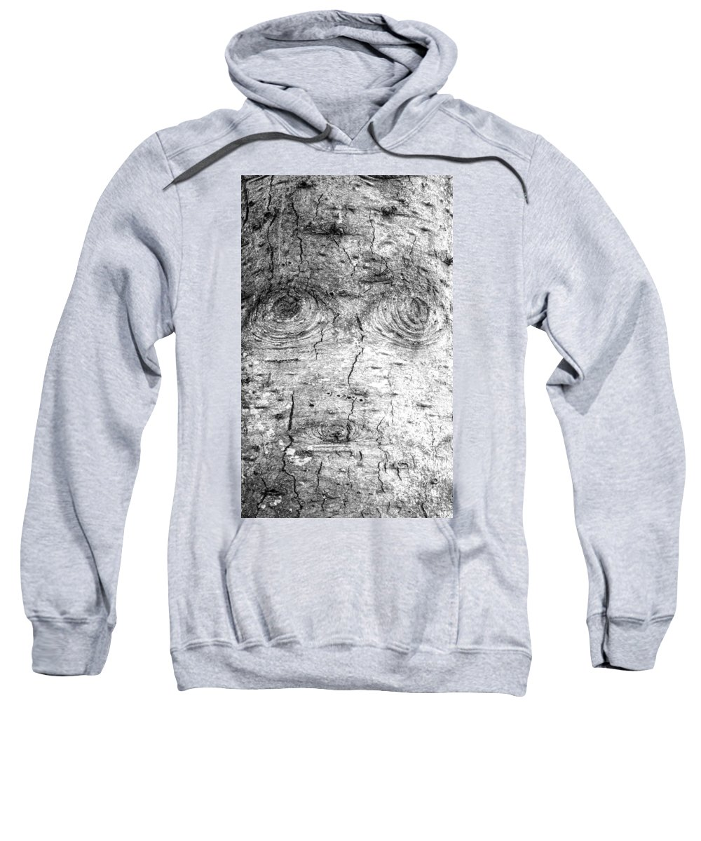 Tree Trunk Texture Sweatshirt featuring the photograph Worrisome by Tikvah's Hope