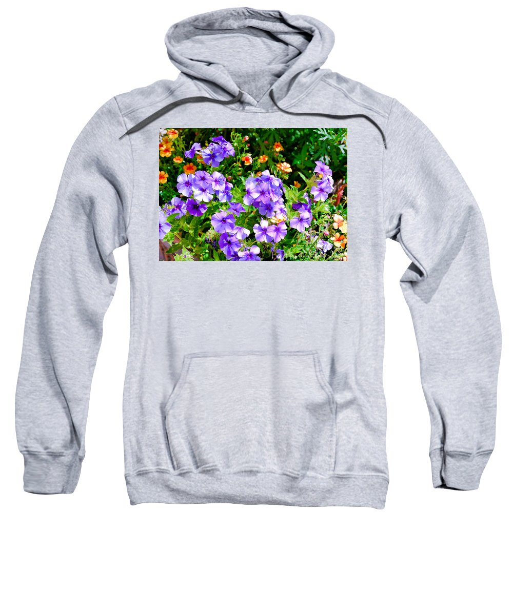 Winter Park Sweatshirt featuring the photograph Wp Floral Study 2 2014 by Robert Meyers-Lussier