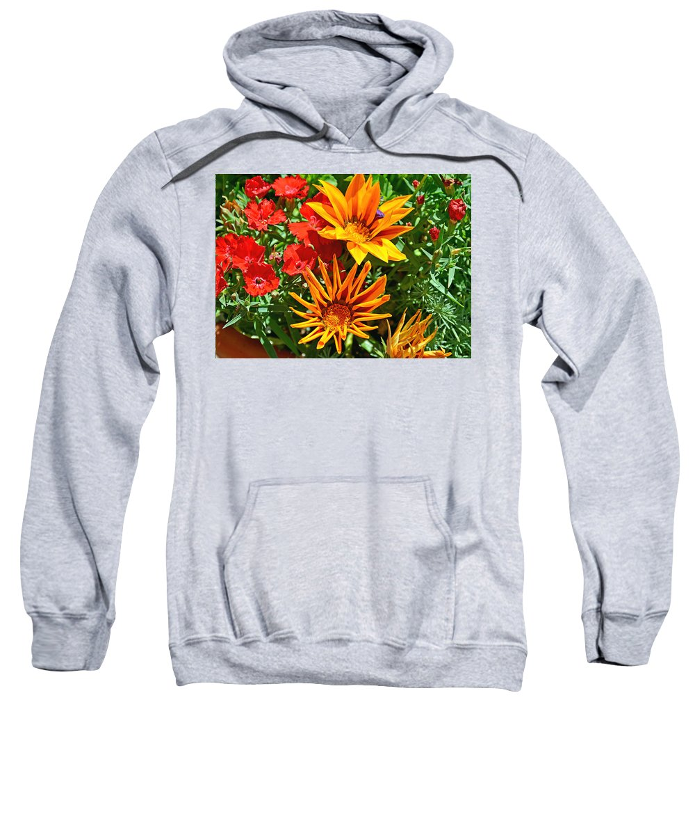Winter Park Sweatshirt featuring the photograph Wp Floral Study 5 2014 by Robert Meyers-Lussier