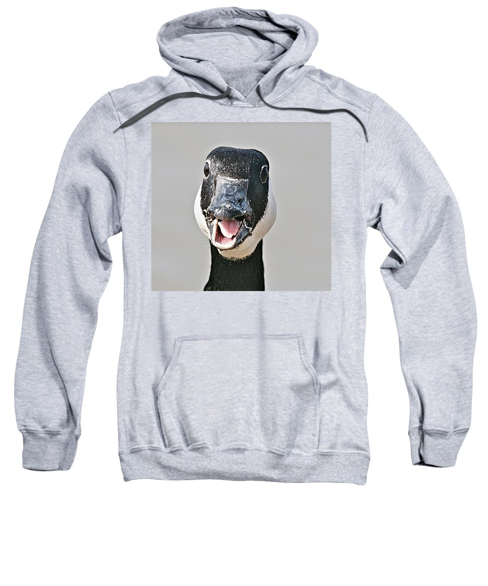 Goose Sweatshirt featuring the photograph Wwhhaaat by Robert Pearson