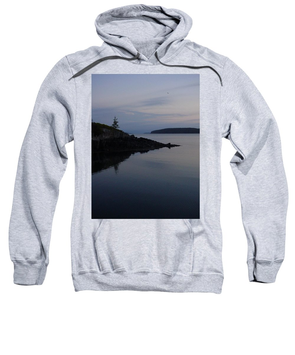 Sweatshirt featuring the photograph Xmas Tree by Kelly Mezzapelle