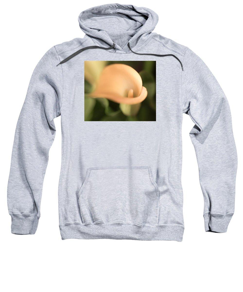 Nature Sweatshirt featuring the photograph Celeste by Marisela Roman