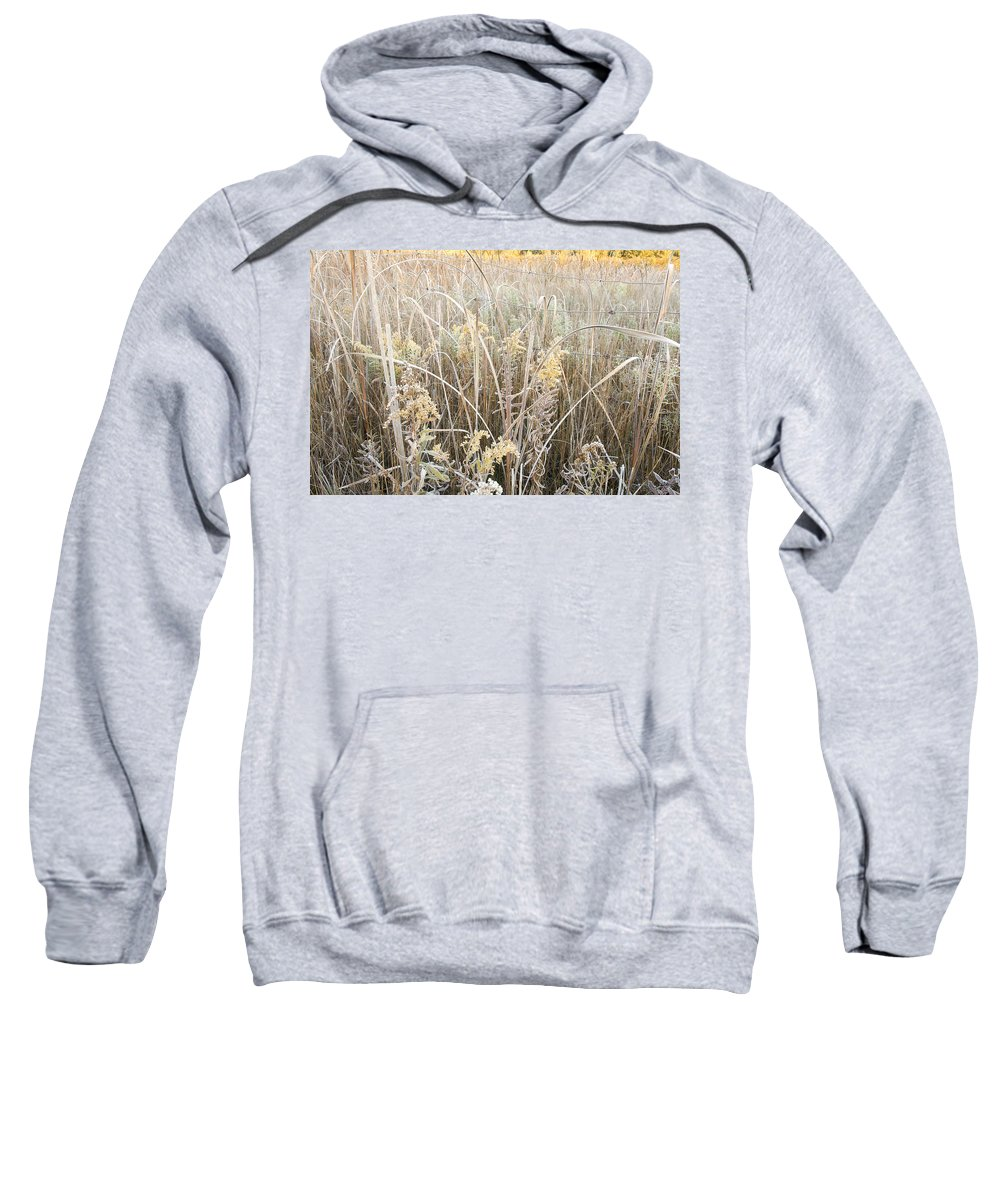 Canada Sweatshirt featuring the photograph Yellow  by Doug Gibbons