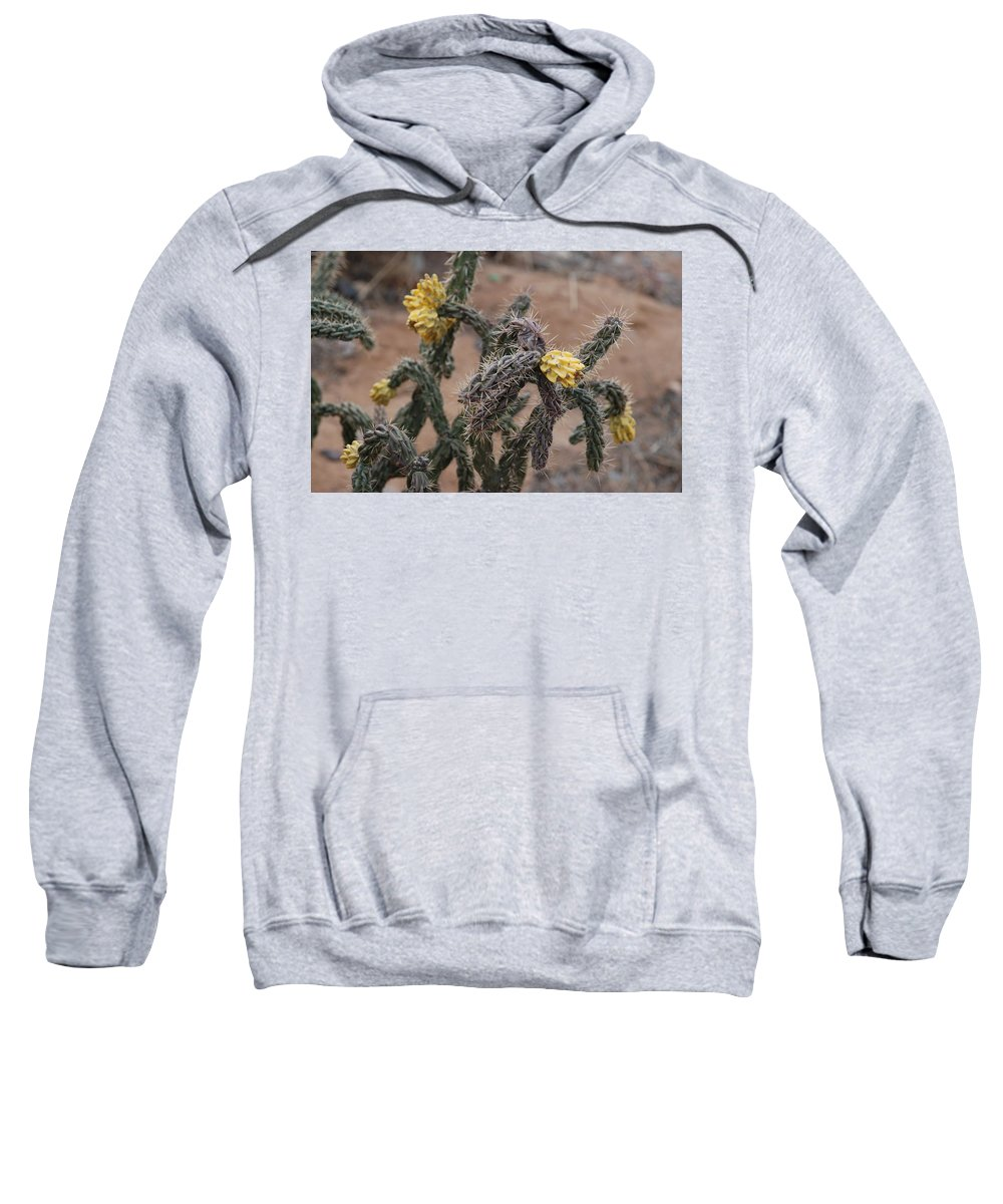 Cactus Sweatshirt featuring the photograph Yellow Cactus by Rob Hans