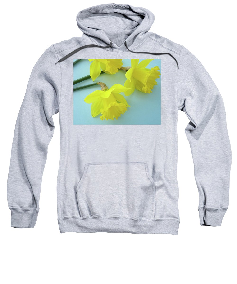 �daffodils Artwork� Sweatshirt featuring the photograph Yellow Daffodils Artwork Spring Flowers Art Prints Nature Floral Art by Baslee Troutman
