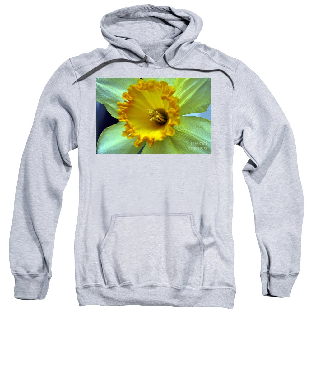 Clay Sweatshirt featuring the photograph Yellow Floral by Clayton Bruster