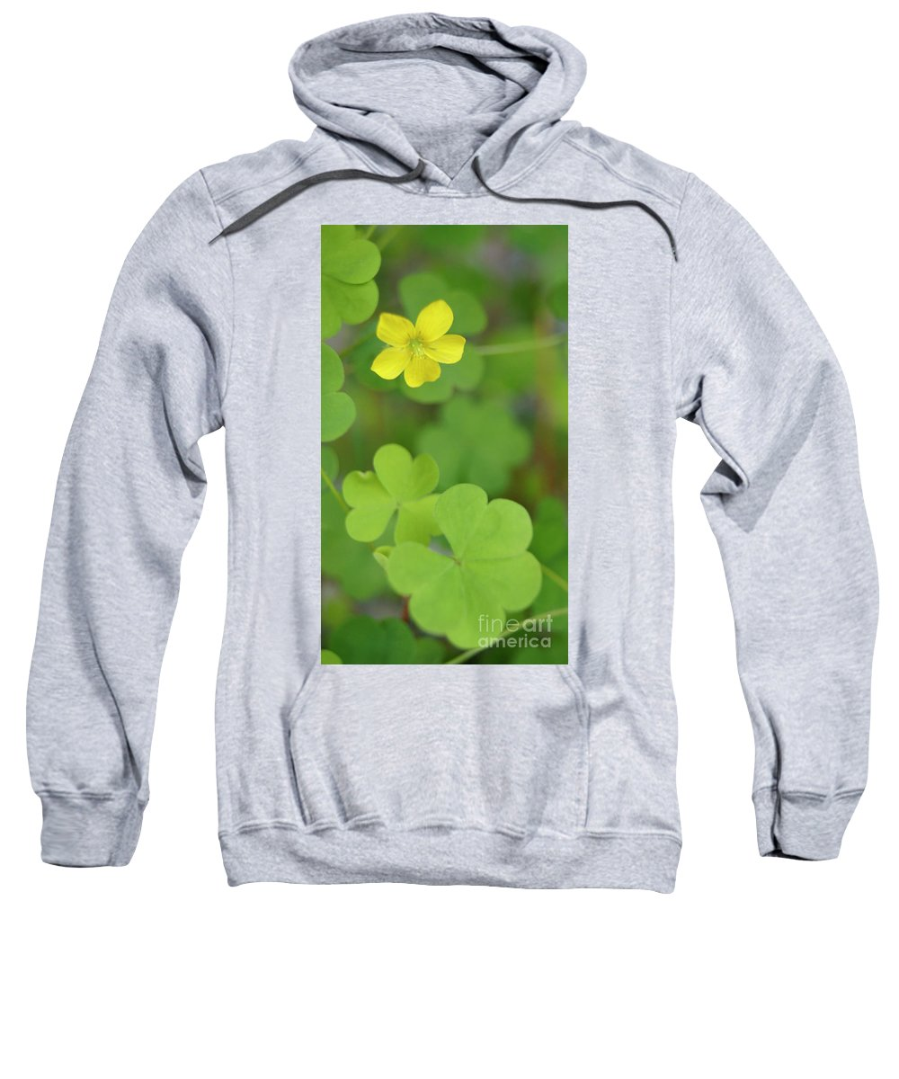 Floral Scene Sweatshirt featuring the photograph Yellow Flower by Line Gagne