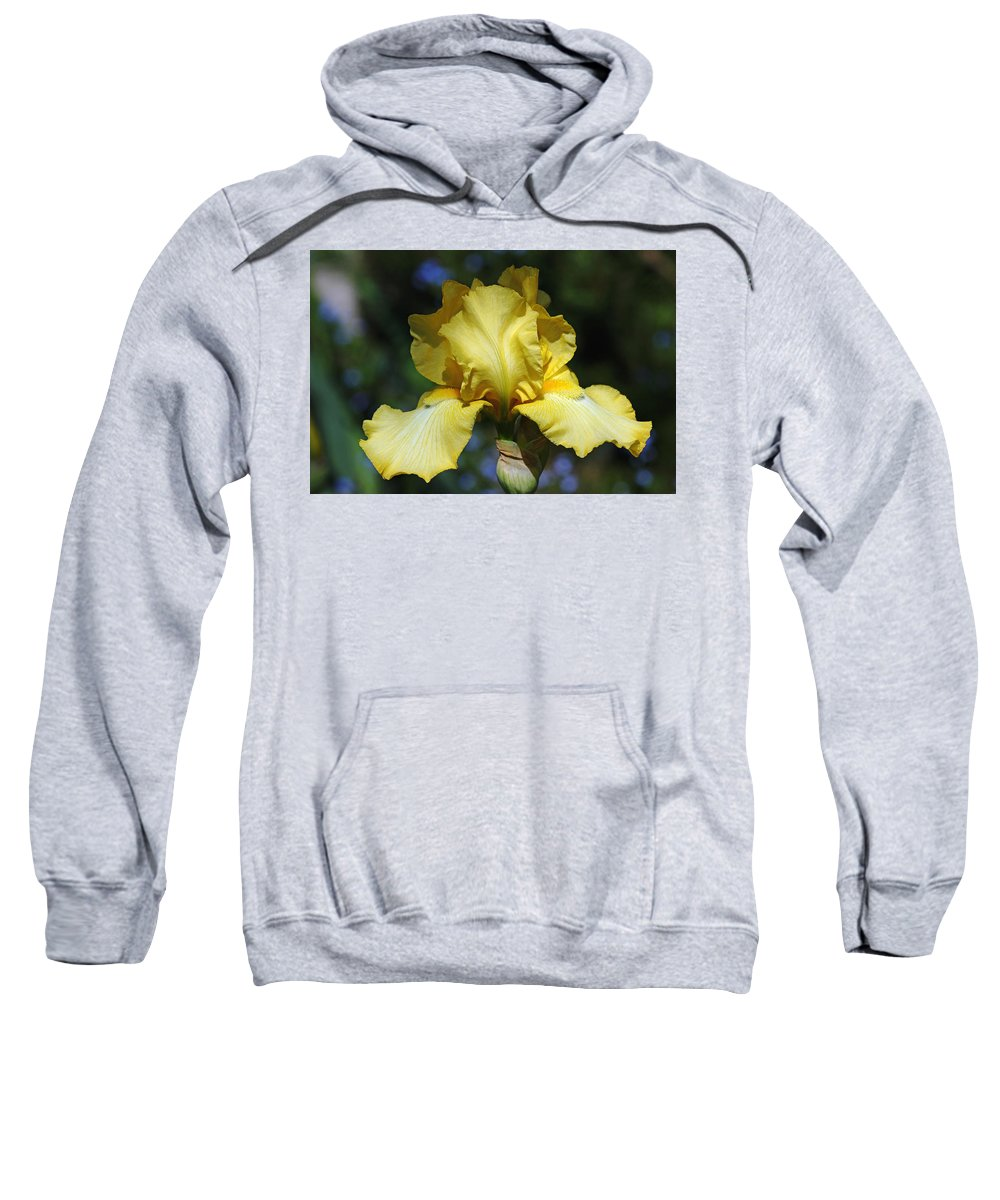 Iris Sweatshirt featuring the photograph Yellow Iris Is For Passion by Debbie Oppermann