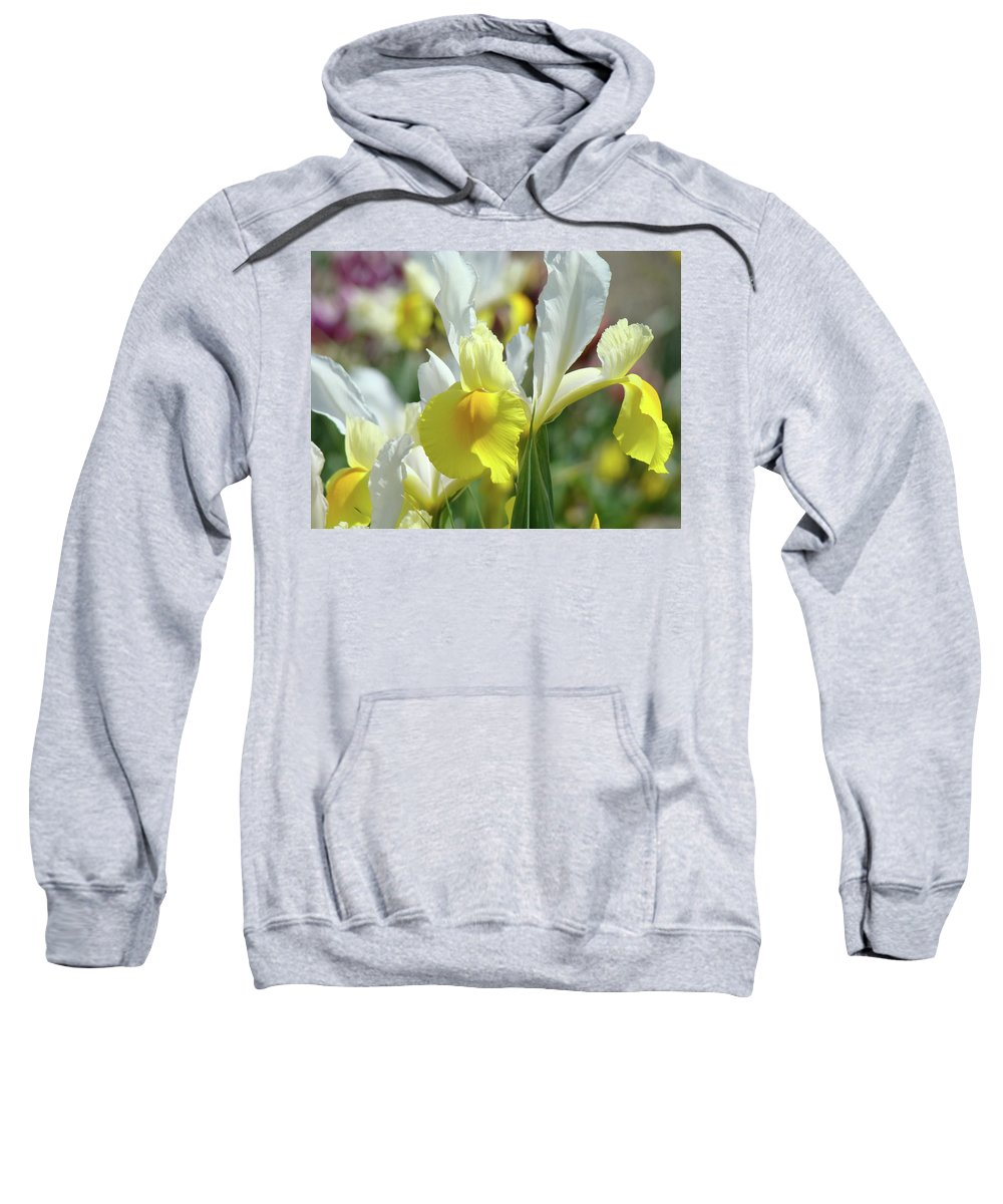 �irises Artwork� Sweatshirt featuring the photograph Yellow Irises Flowers Iris Flower Art Print Floral Botanical Art Baslee Troutman by Baslee Troutman