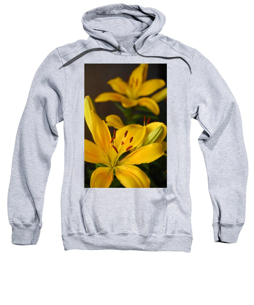 Flower Sweatshirt featuring the photograph Yellow Lily Mirror by Amy Fose