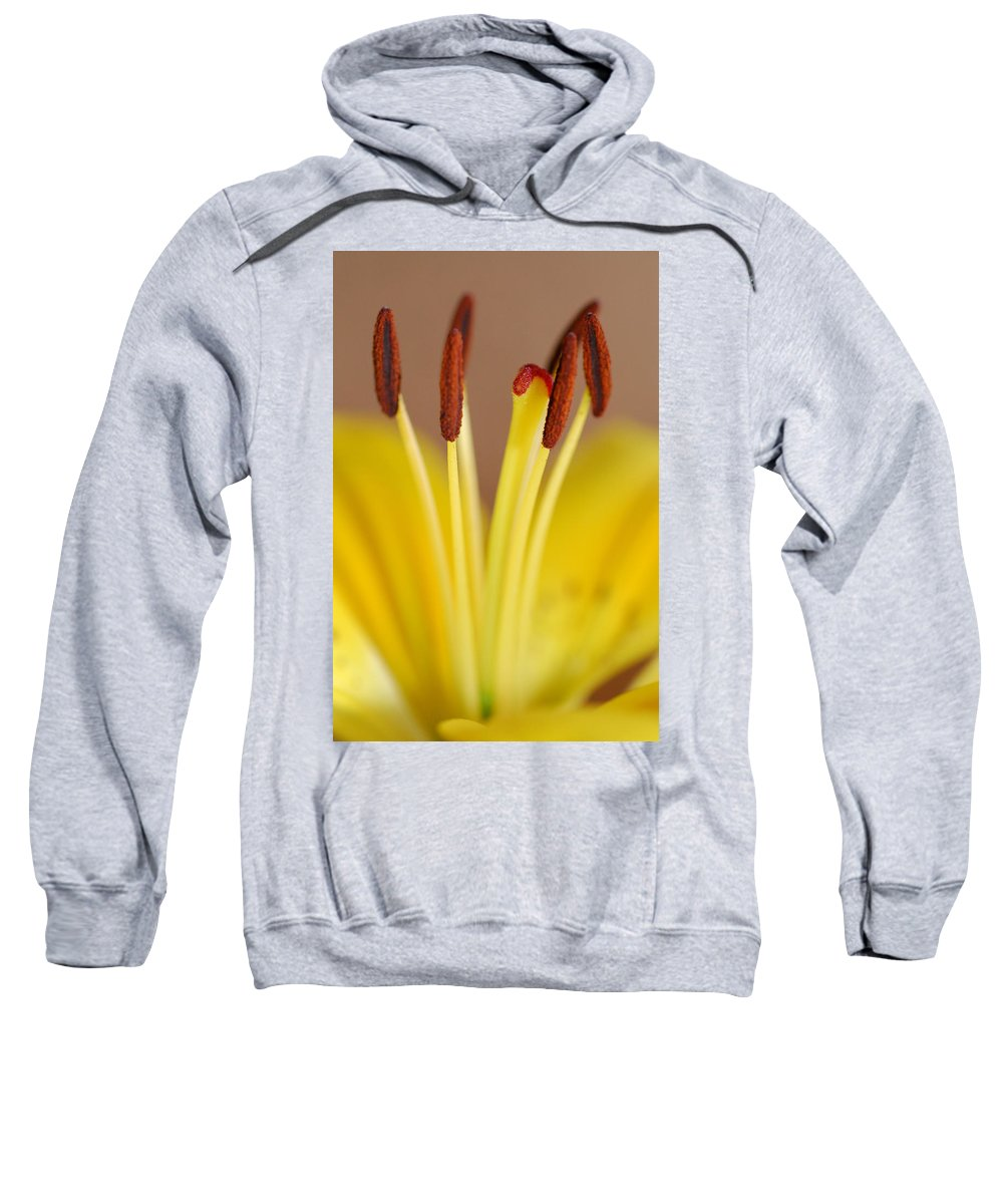 Flower Sweatshirt featuring the photograph Yellow Lily Reach 1 by Amy Fose