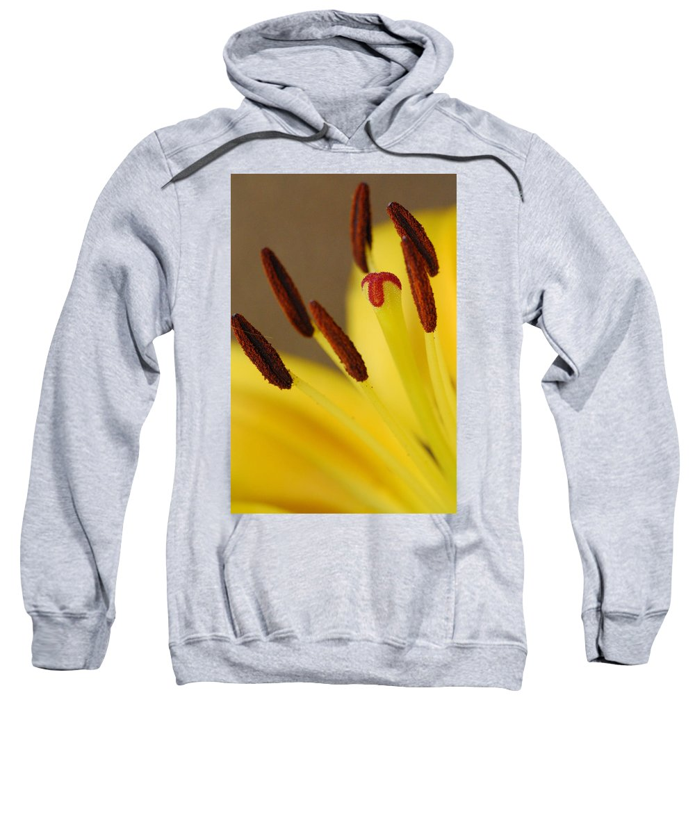 Flower Sweatshirt featuring the photograph Yellow Lily Reach 2 by Amy Fose