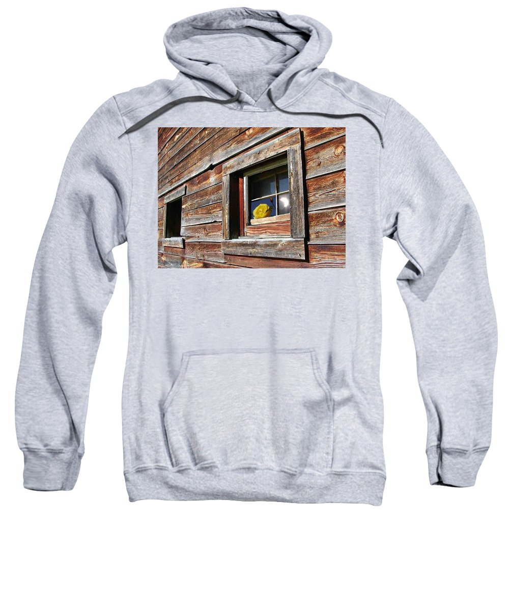 Barn Sweatshirt featuring the digital art Yellow Rose Eclipse by Tim Allen