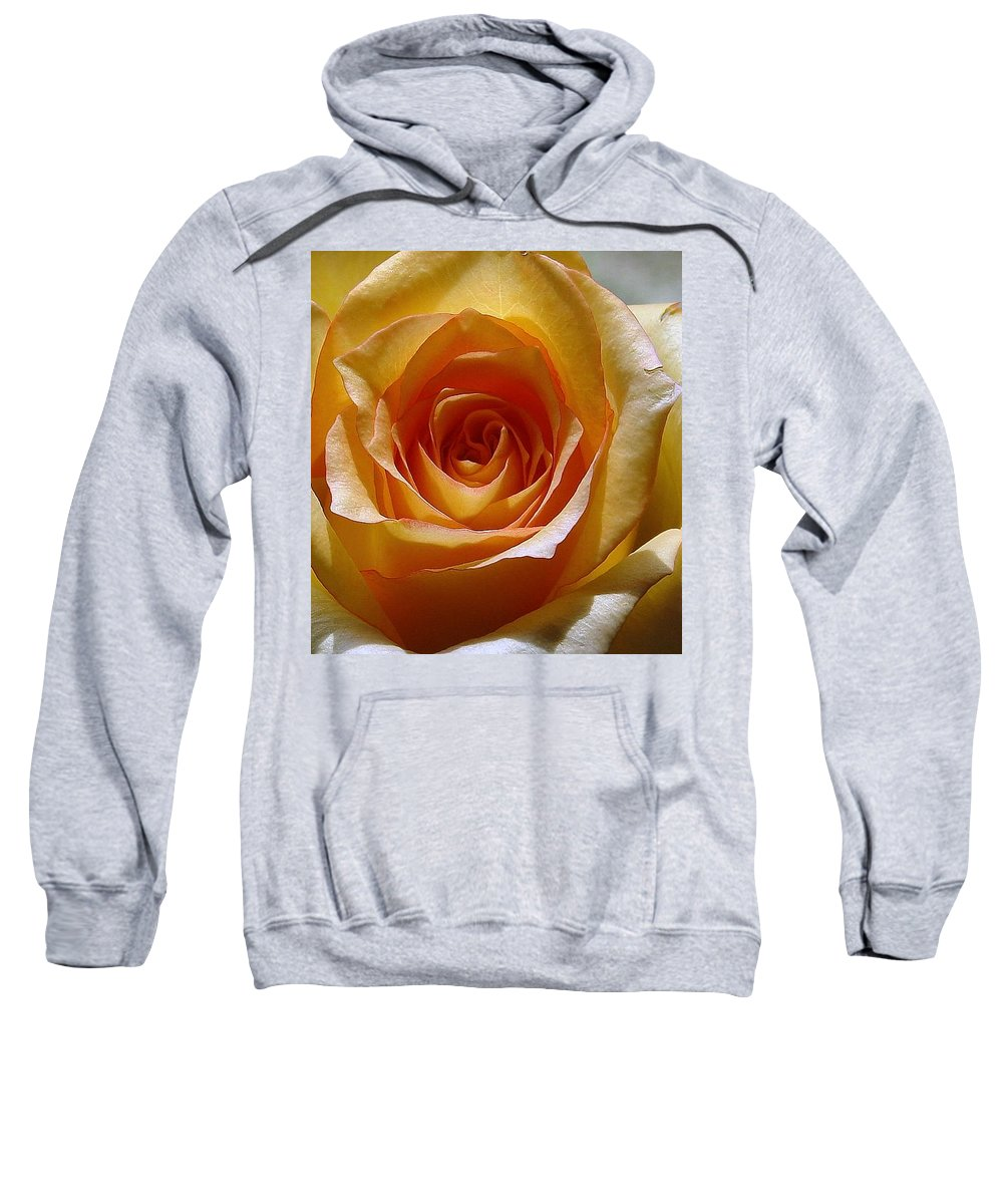 Rose Yellow Sweatshirt featuring the photograph Yellow Rose by Luciana Seymour