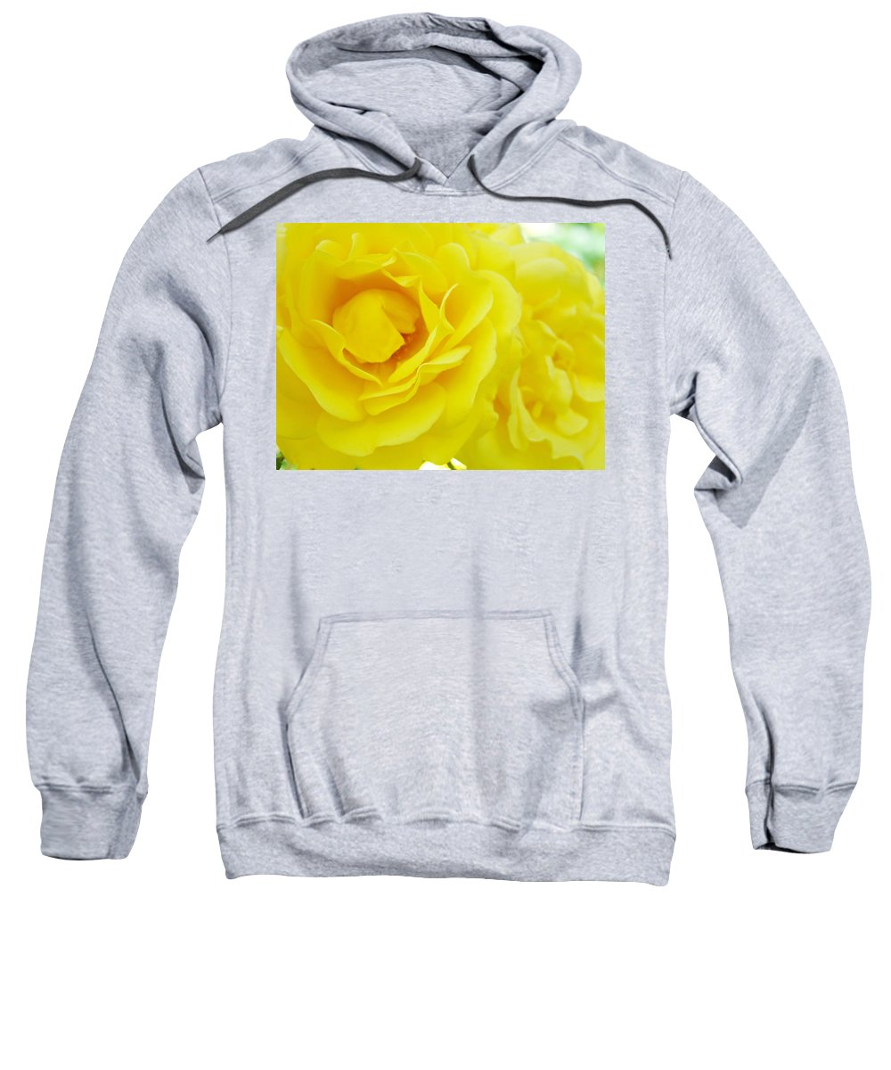 Rose Sweatshirt featuring the photograph Yellow Roses Art Prints Botanical Giclee Prints Baslee Troutman by Baslee Troutman