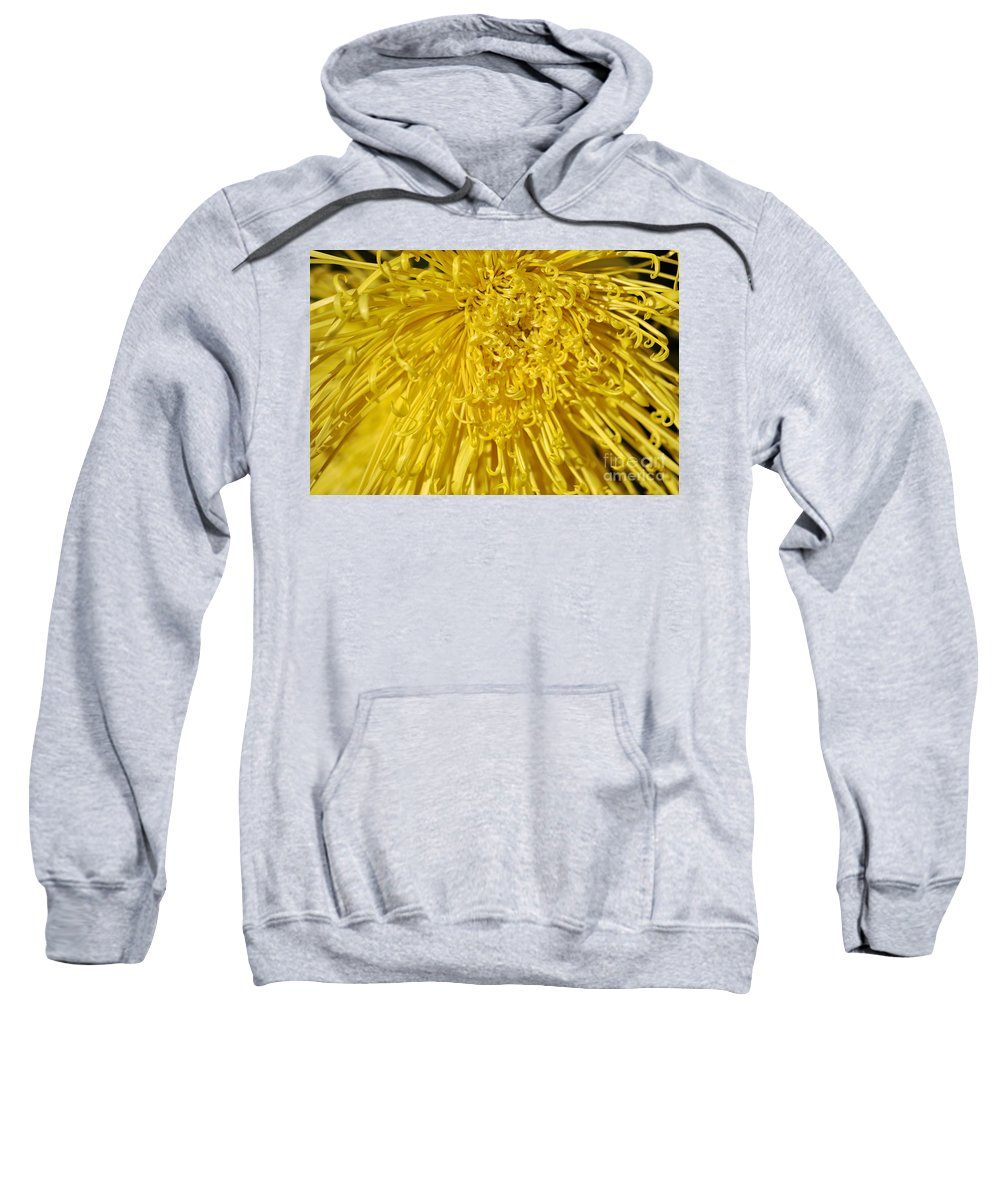 Clay Sweatshirt featuring the photograph Yellow Strings by Clayton Bruster