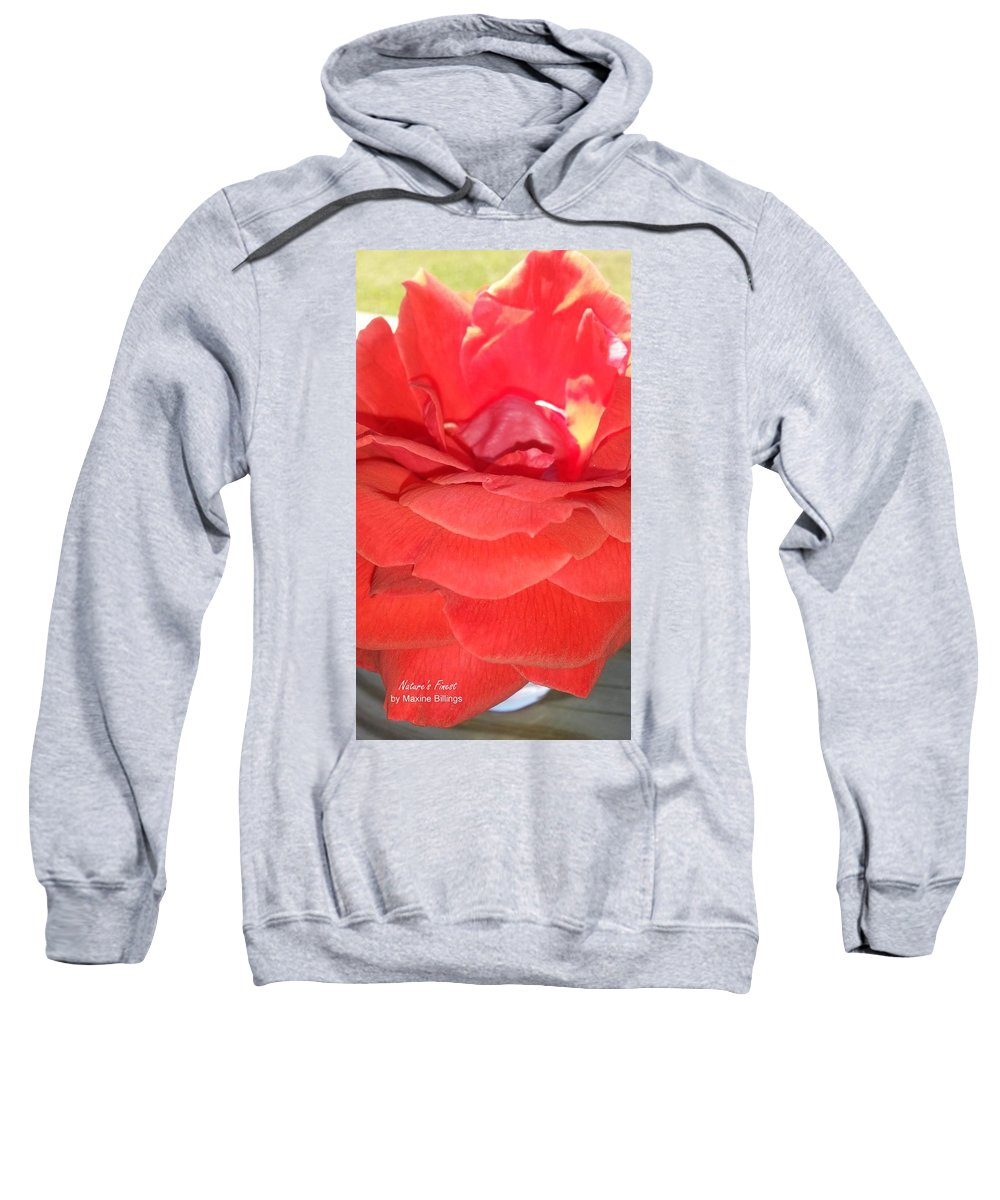 Roses Sweatshirt featuring the photograph Yellow-striped Red Rose by Maxine Billings