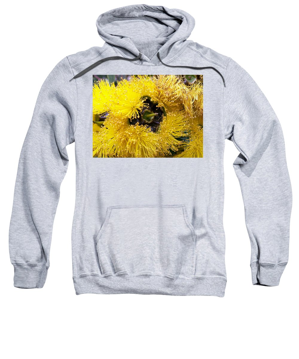 Flower Sweatshirt featuring the photograph Yellow Tree Flower by Amy Fose