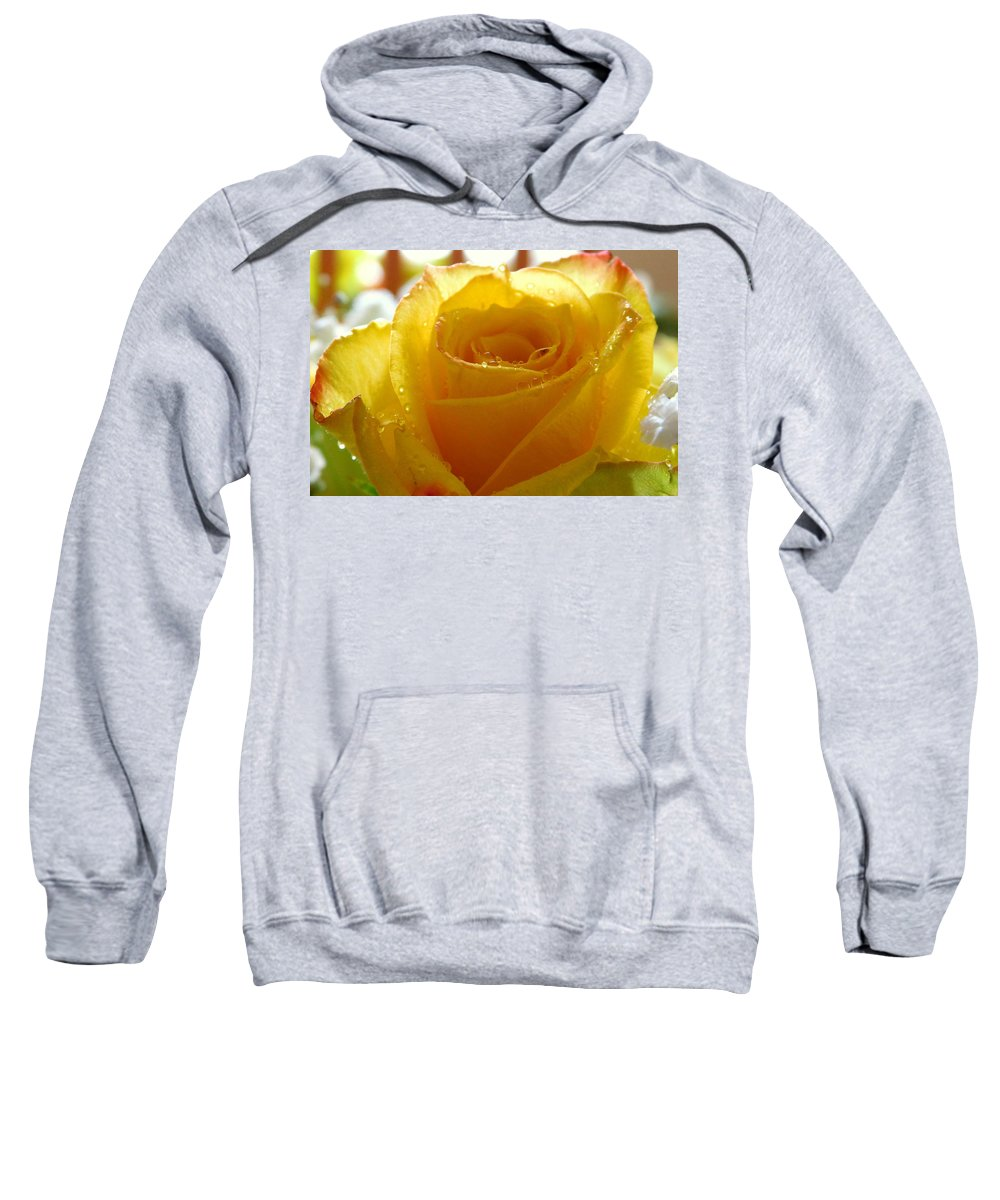 Single Rose Sweatshirt featuring the photograph Yellow Valentine Roses - 4 by Arlane Crump