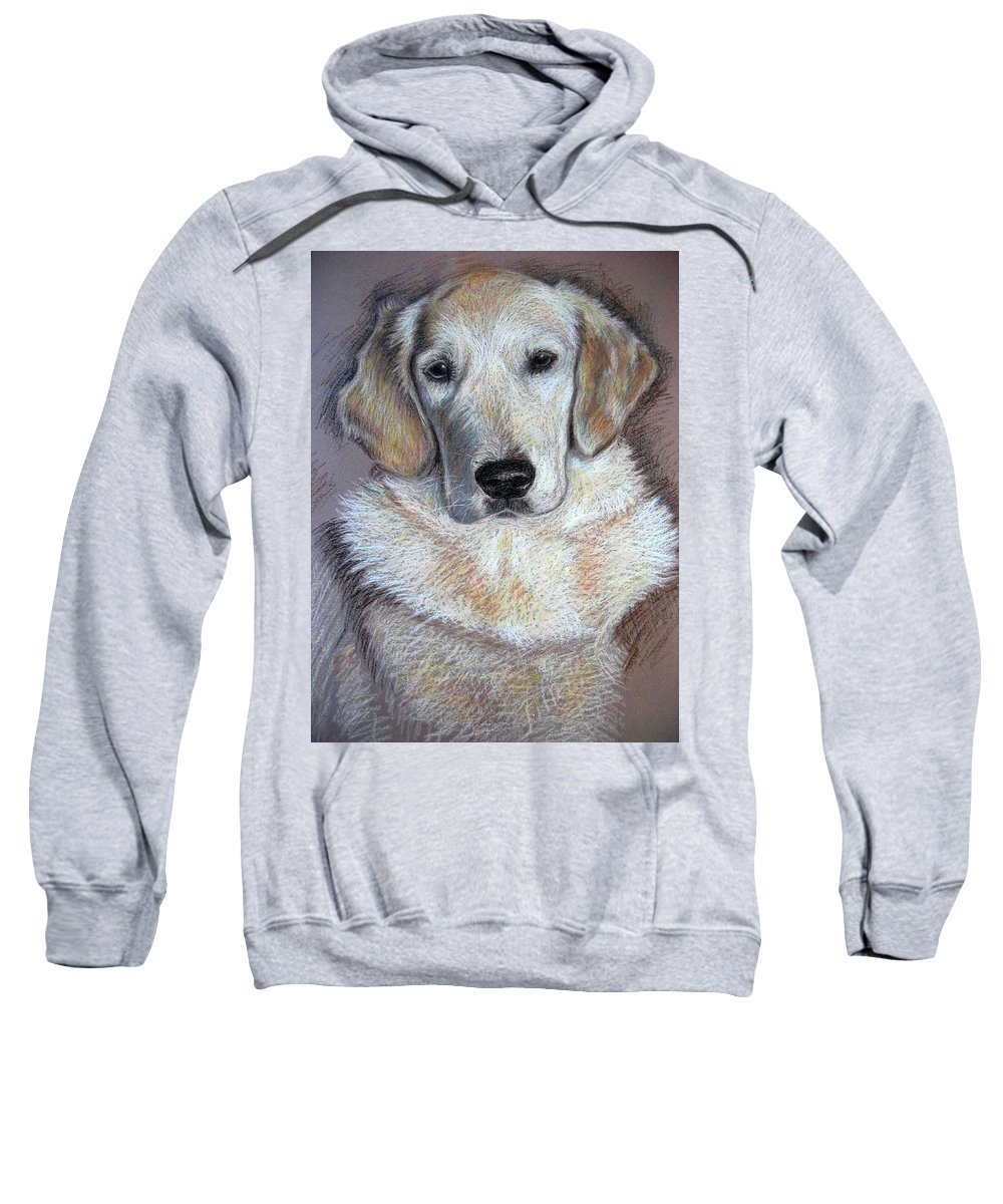Dog Sweatshirt featuring the pastel Young Golden Retriever by Nicole Zeug