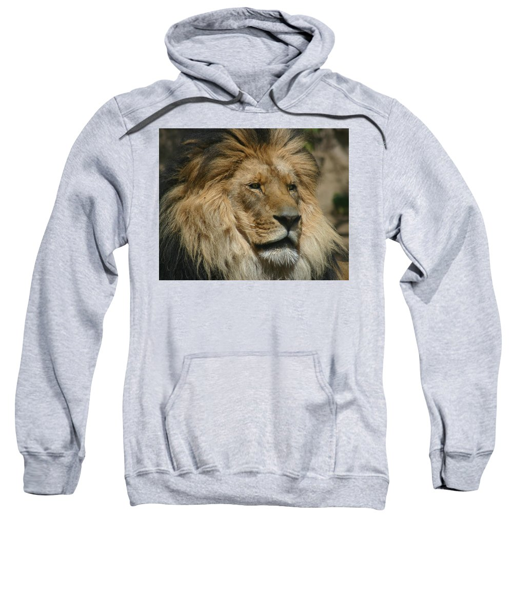 Lion Sweatshirt featuring the photograph Your Majesty by Anthony Jones