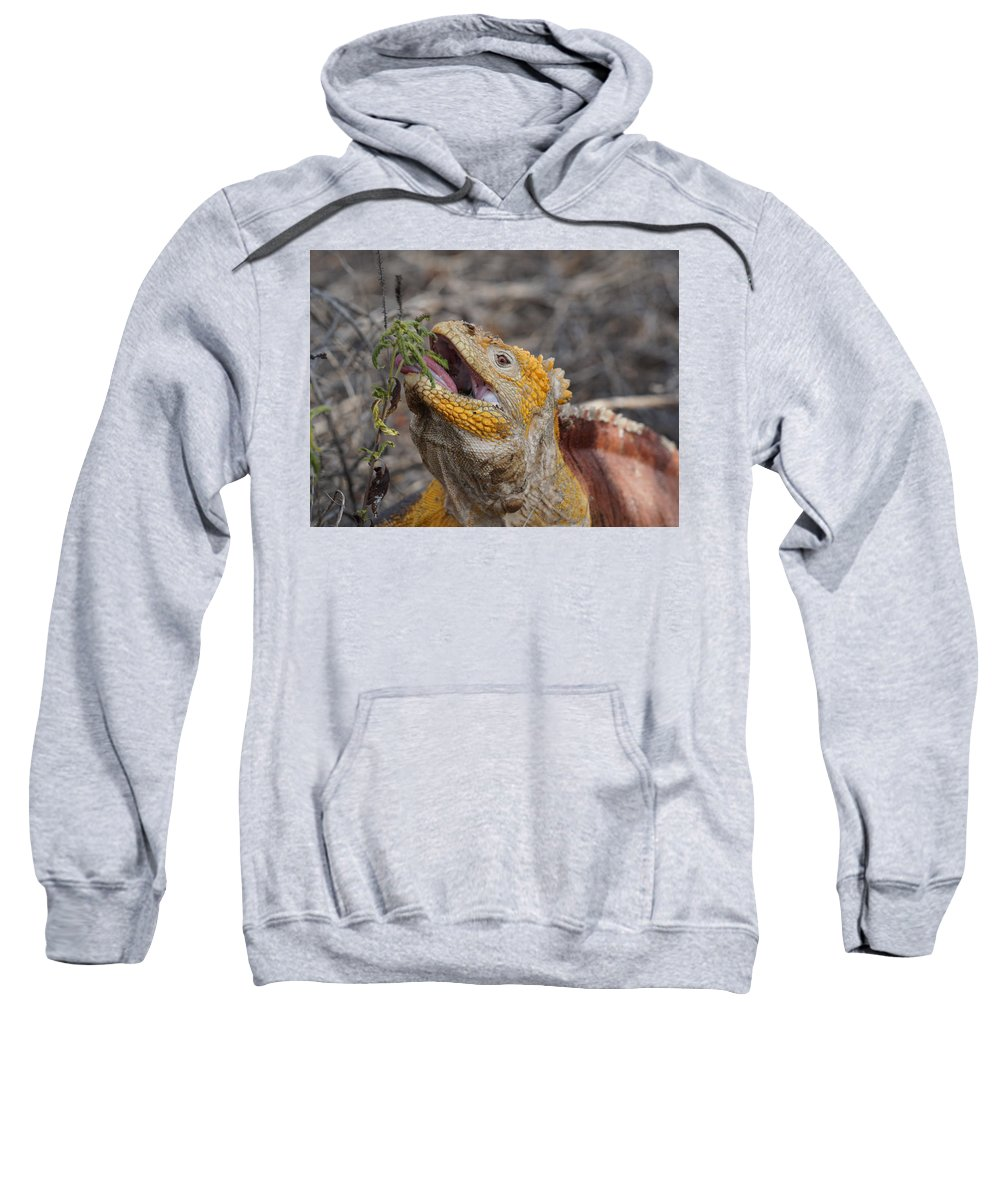 Sweatshirt featuring the photograph Yummy by Diego Paredes
