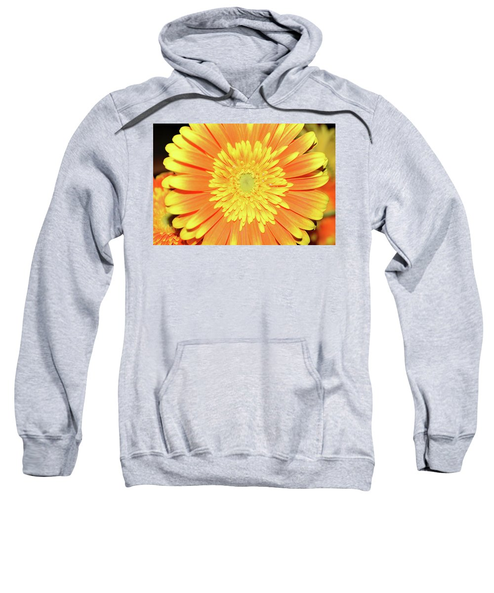 Flowers Sweatshirt featuring the photograph 7289-yelow Gerber by Elvira Ladocki