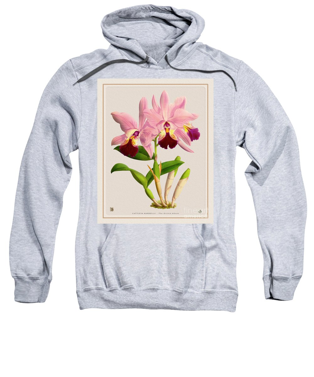 Colors Sweatshirt featuring the digital art Orchid Vintage Print On Colored Paperboard by Baptiste Posters