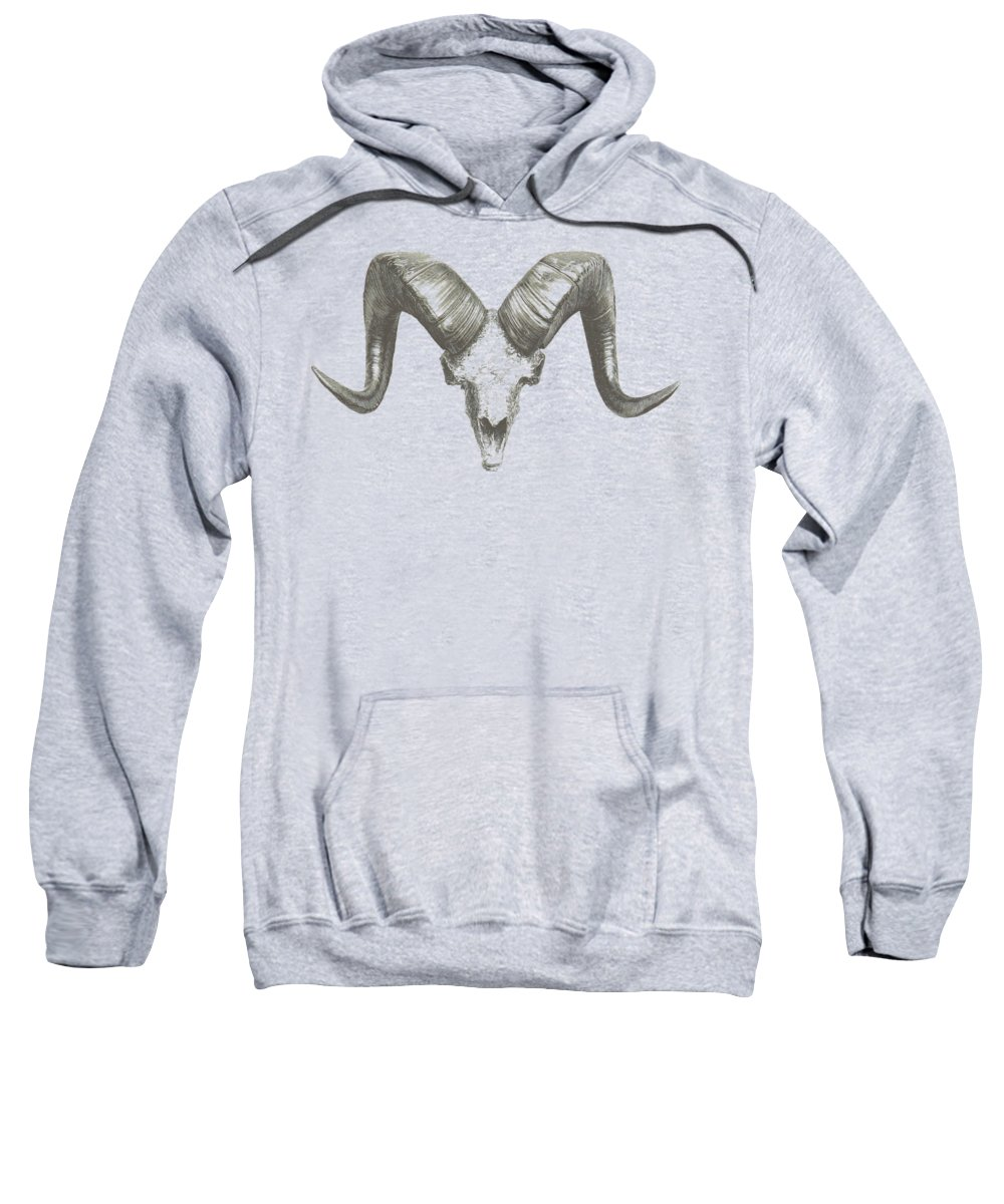 Albrecht Durer Hooded Sweatshirts T-Shirts
