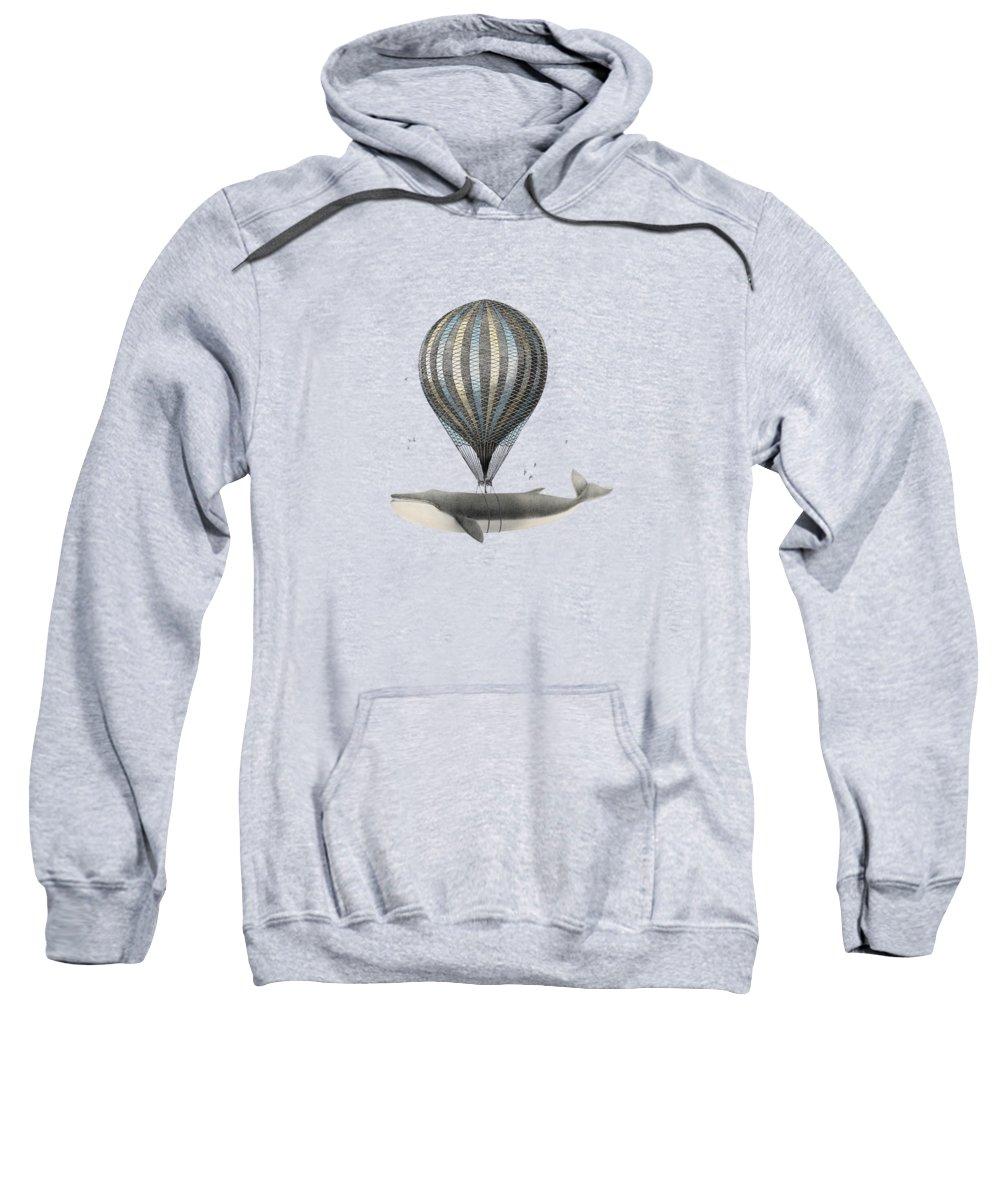 Scientific Illustration Hooded Sweatshirts T-Shirts