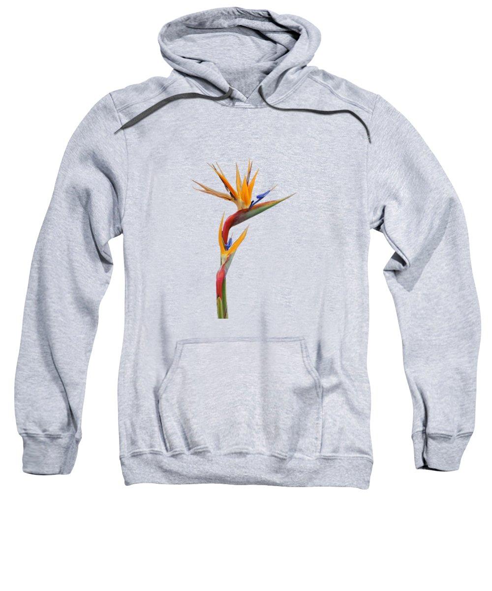 African Bird Photographs Hooded Sweatshirts T-Shirts
