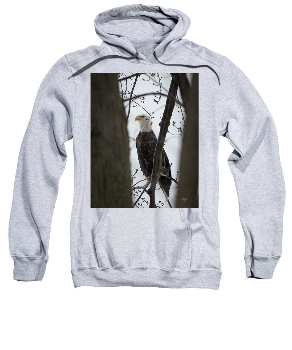 Bald Sweatshirt featuring the photograph On Morning Watch by Everet Regal